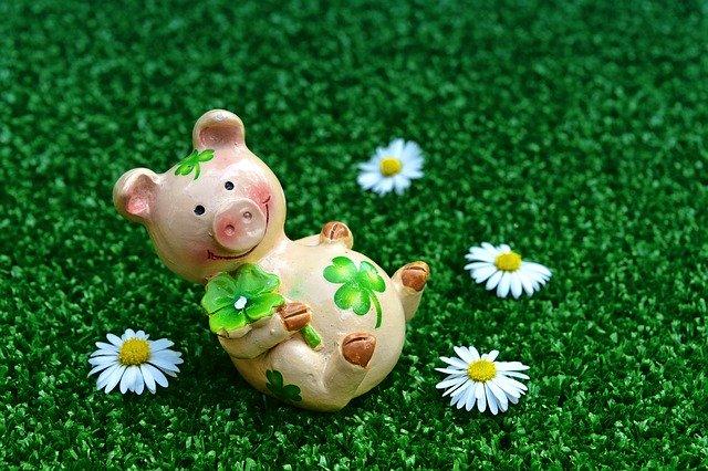 花に囲まれたラッキーな豚